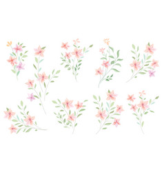 Floral bouquet set flowers and leaves garden vector