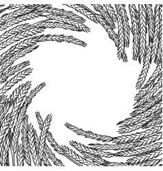 graphic malt design vector image