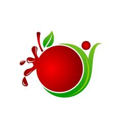 Health fruit juice vector