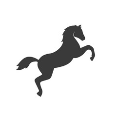 jumping horse icon images vector image