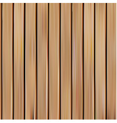 isolated realistic seamless wooden texture vector image