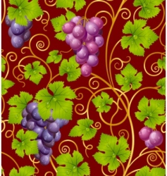 grape pattern vector image vector image