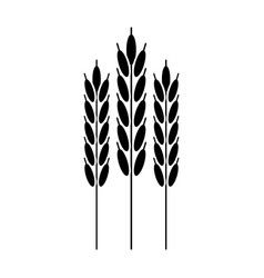 harvesting wheat ears pictogram vector image