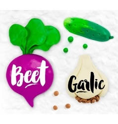 Plasticine vegetables beet vector image