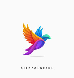 bird colorful concept design template vector image