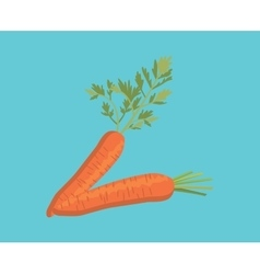 carrot two single isolated with blue background vector image