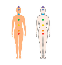 Chakras on the female body vector
