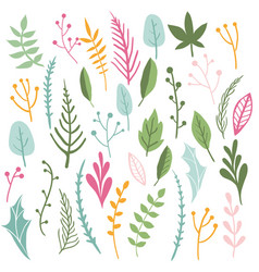 herbs and leaves collection vector image