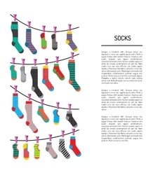 set colorful socks vector image