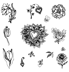 set of design of flowers vector image