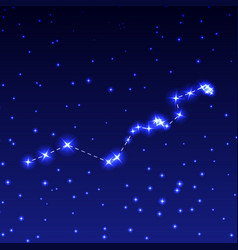 The constellation hydra in the night starry sky vector