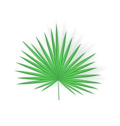 tropical leaf icon closeup vector image