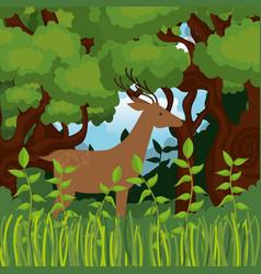 wild reindeer in the jungle scene vector image