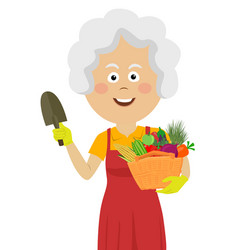 cute elderly gardening woman with wicker basket vector image vector image