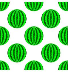 fresh ripe green watermelon vector image