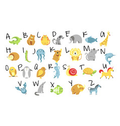 animals and zoo alphabet abc and childish vector image