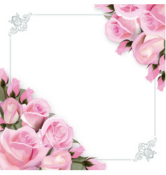 Background with pink roses flowers and vector