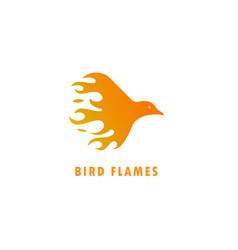 bird flames logo vector image