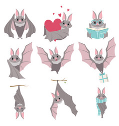 Collection of funny gray bats cute creature vector