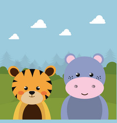 cute tiger and hippo in the field character vector image