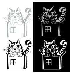 Funny cat in box vector