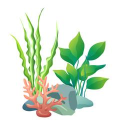 Green vegetation of deep sea vector