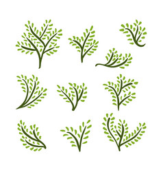 Hand drawn trees set vector