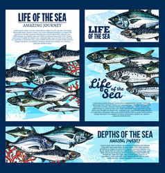 sea life banner with fish and ocean animal sketch vector image