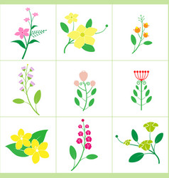 set cute flower vector image