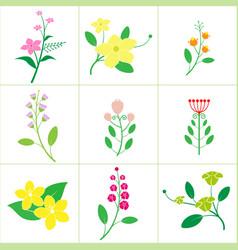 set of cute flower vector image