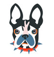 abstract papercut collage dog head vector image