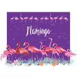 border with flamingoes and tropical plants vector image vector image