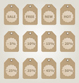 brown Sale Tags vector image
