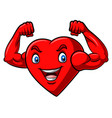 cartoon strong heart with muscular arm vector image vector image