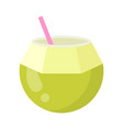 cute coconut exotic fruit isolated colorful vector image vector image