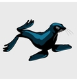 Cute sea lion single isolated icon vector image