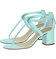 fashion woman light blue shoes vector image vector image