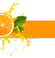fresh orange background vector image vector image