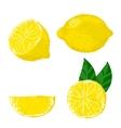 lemon fruits vector image vector image