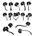 set tropical palm trees with leaves mature and vector image vector image