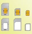 Types of SIM cards vector image