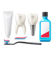 3d teeth and oral care products mock up vector image