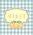 apricot label in retro style on squared background vector image vector image