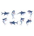 cartoon sharks comic shark animals cute vector image