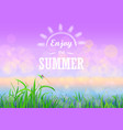 green grass with bokeh sunset sky enjoy summer vector image vector image