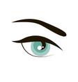 open eye with eyebrow simple sign icon vector image