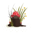 Toadstool Mushrooms Growing in Forest on Stump vector image