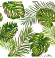 tropical palm leaves seamless pattern watercolor vector image