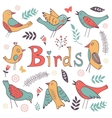 Cute hand drawn colorful birds collection vector image
