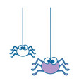 cute spiders hanging halloween decoration vector image